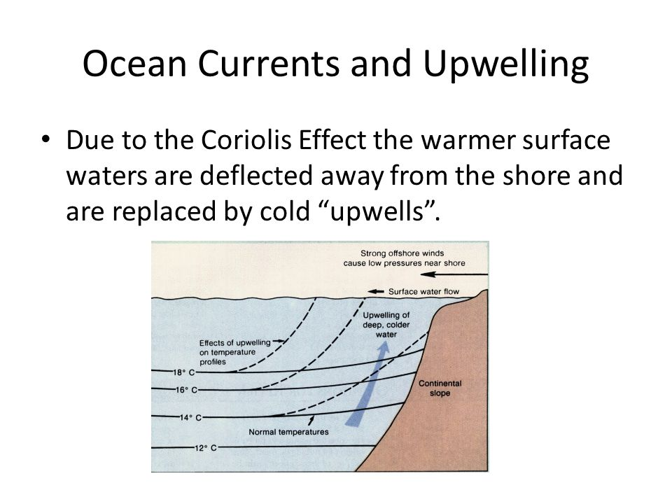 Ocean Currents and Upwelling