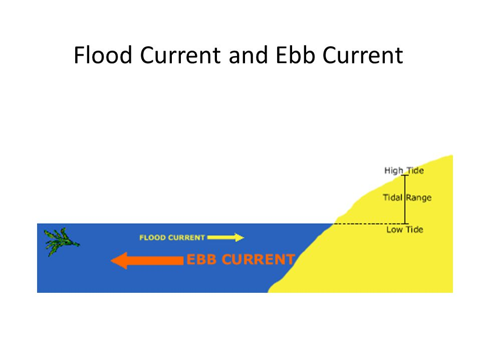 Flood Current and Ebb Current