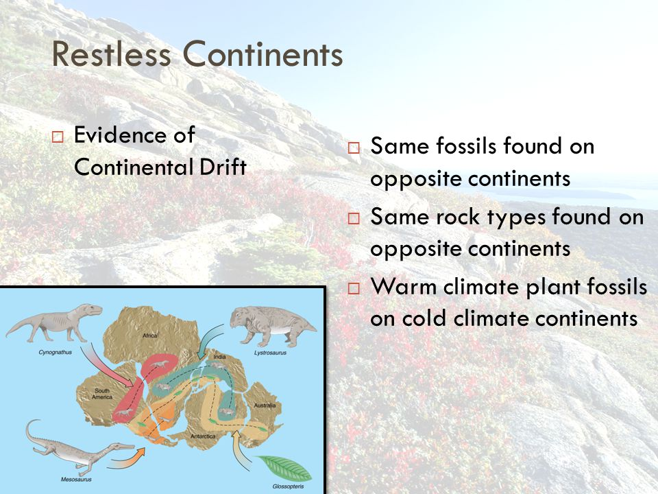 Restless Continents Evidence of Continental Drift