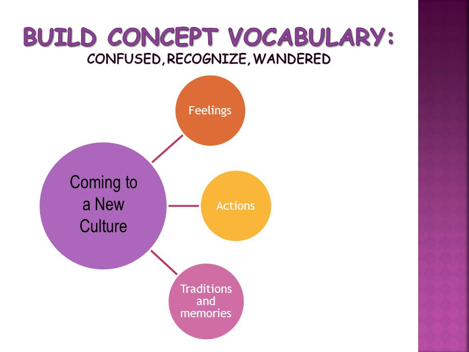 Build Concept Vocabulary: confused, recognize, wandered