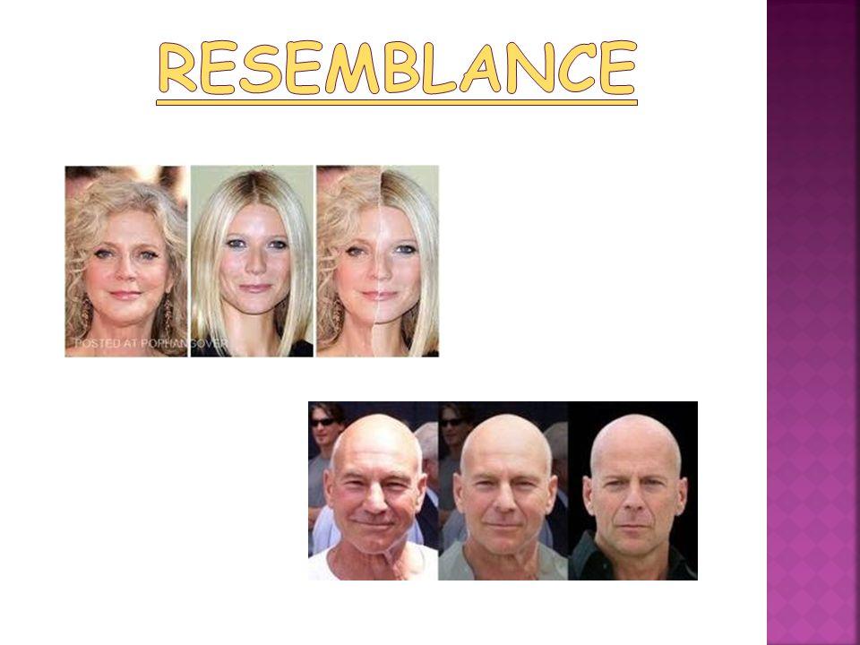 resemblance