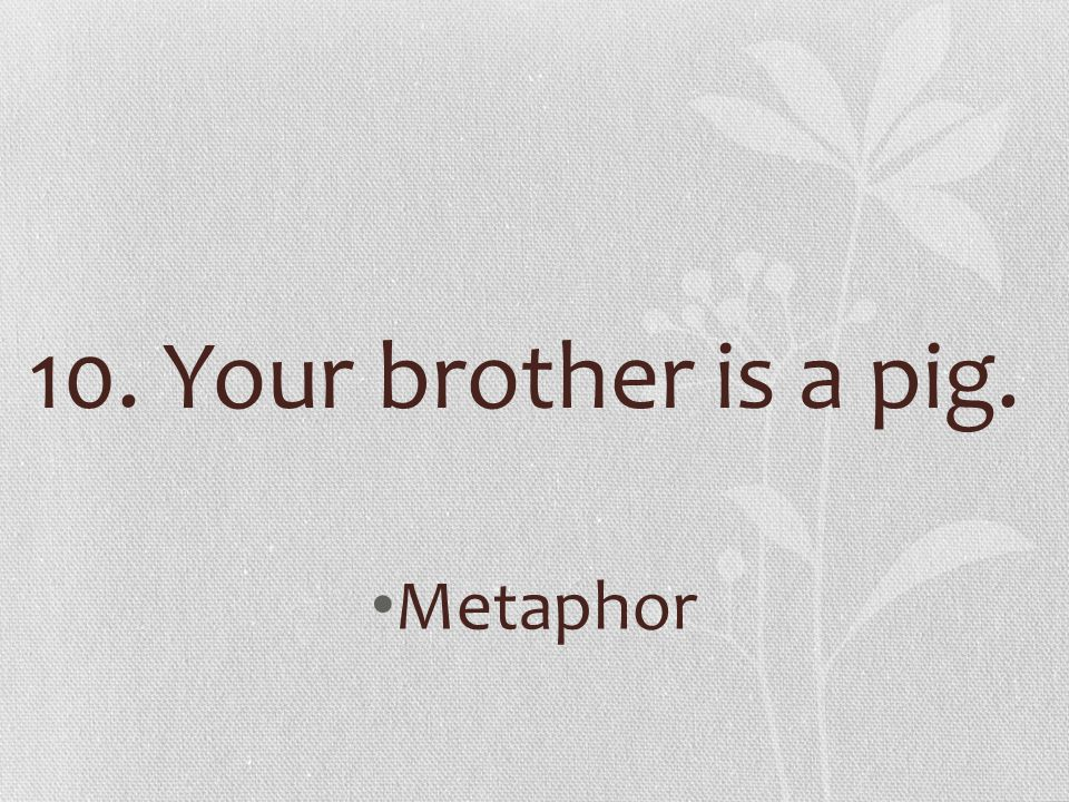 10. Your brother is a pig. Metaphor