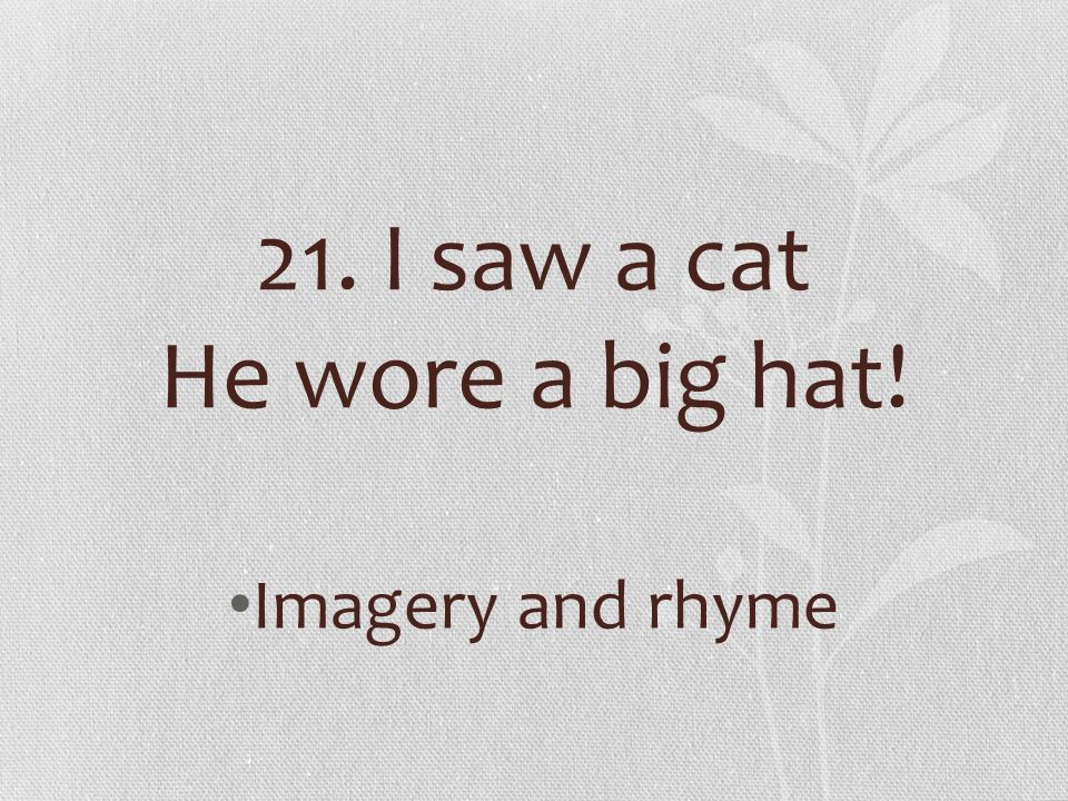 21. I saw a cat He wore a big hat!