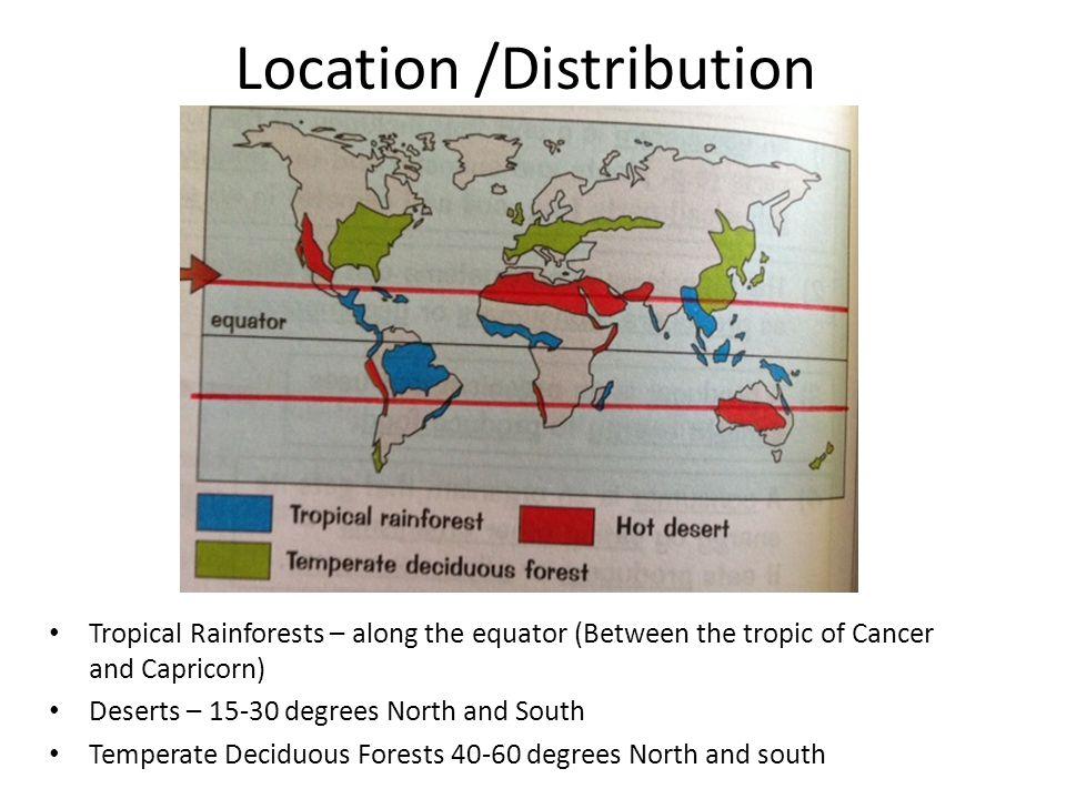 Location /Distribution