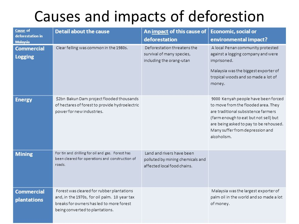 Causes and impacts of deforestion