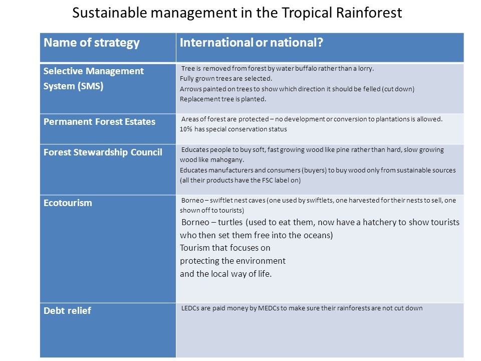 Sustainable management in the Tropical Rainforest