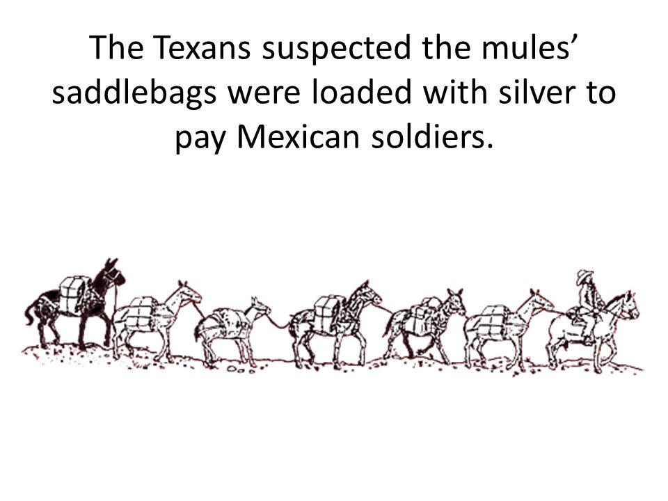 The Texans suspected the mules' saddlebags were loaded with silver to pay Mexican soldiers.