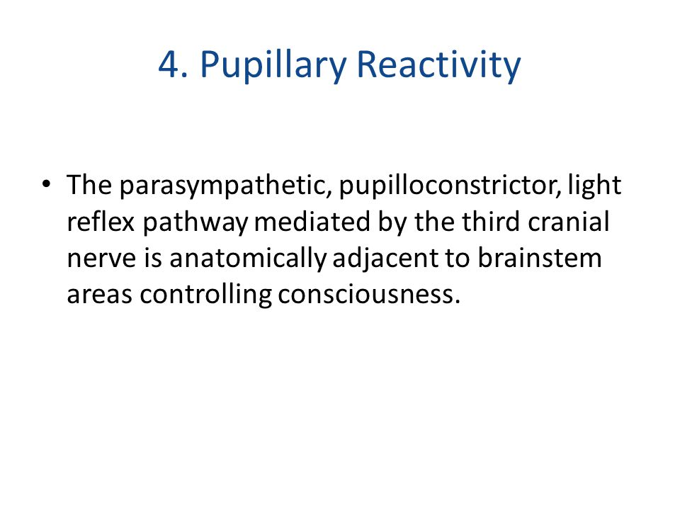 4. Pupillary Reactivity