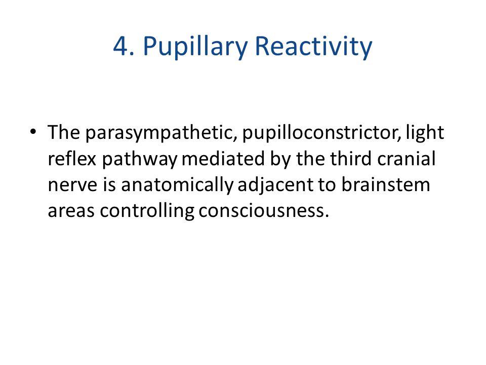 4. Pupillary Reactivity