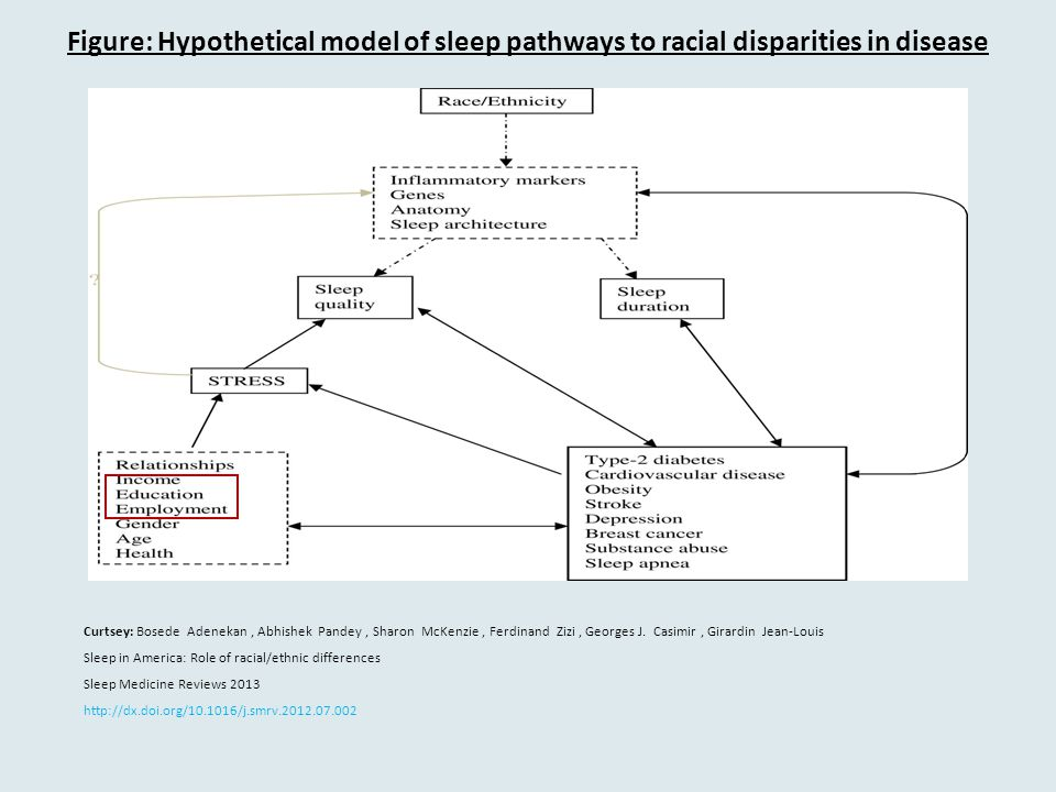 Figure: Hypothetical model of sleep pathways to racial disparities in disease