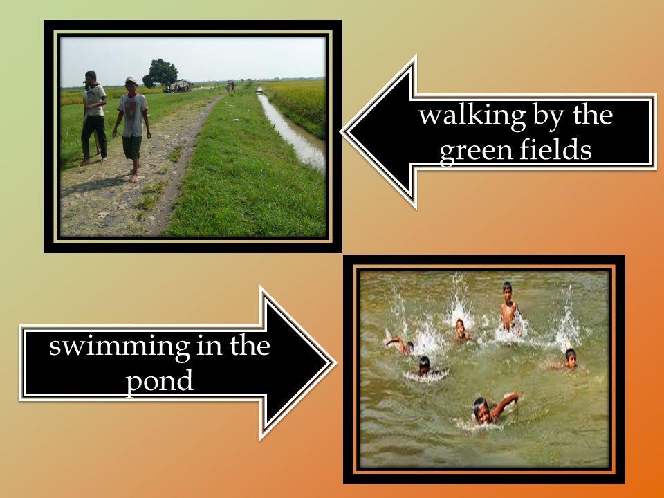 walking by the green fields