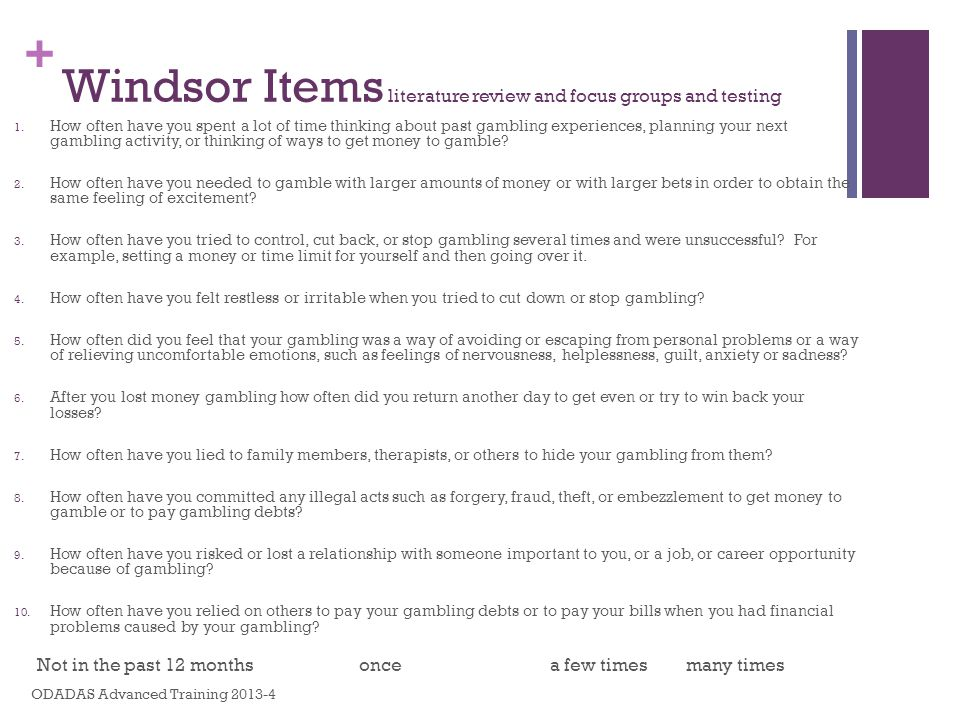 Windsor Items literature review and focus groups and testing