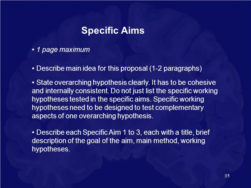 Specific Aims • 1 page maximum