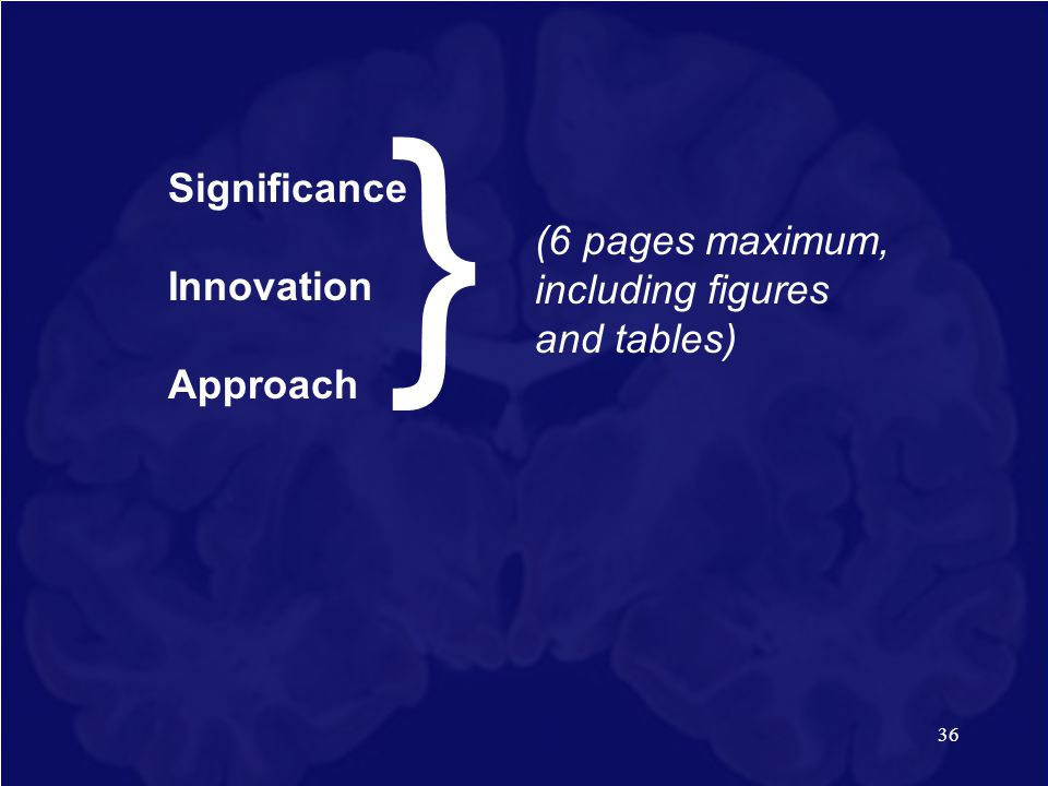 } Significance Innovation
