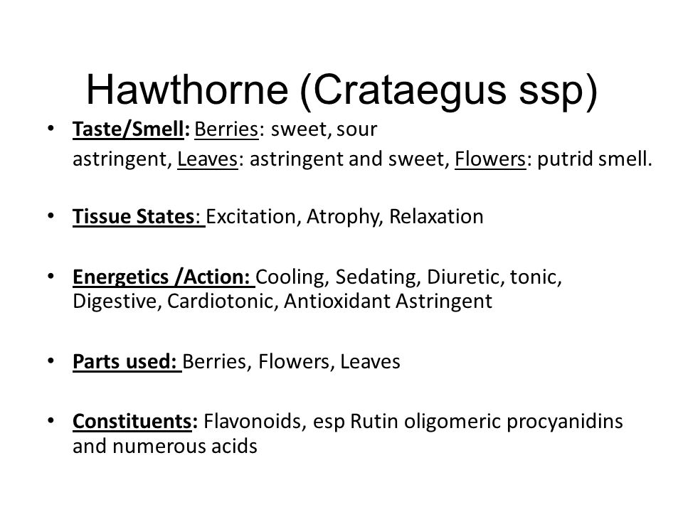 Hawthorne (Crataegus ssp)