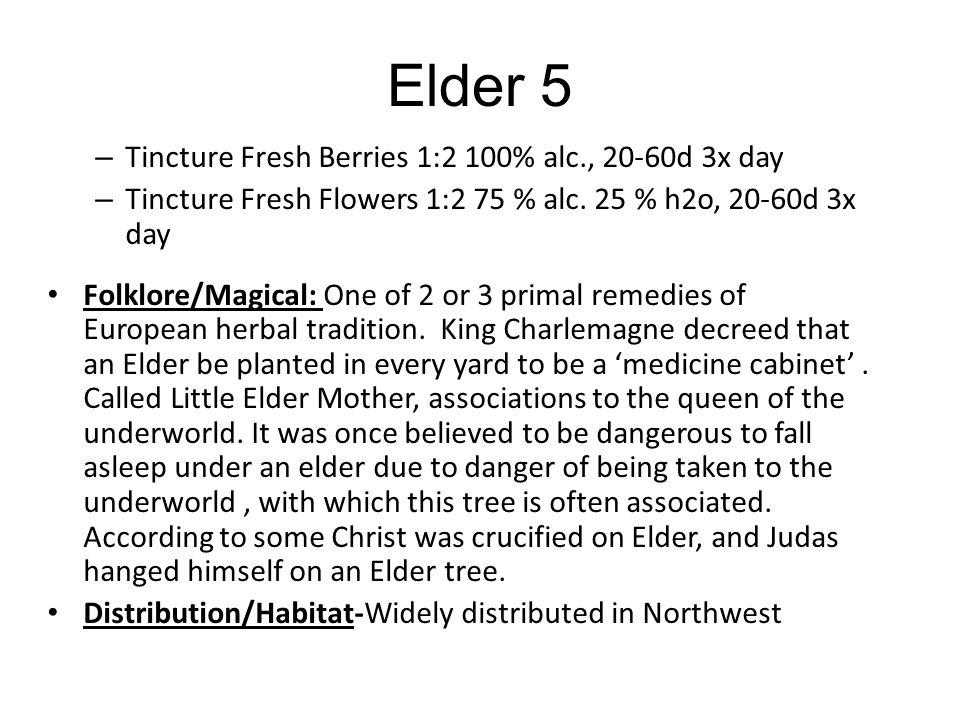 Elder 5 Tincture Fresh Berries 1:2 100% alc., 20-60d 3x day