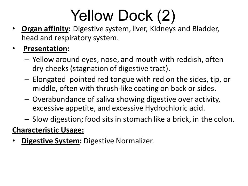 Yellow Dock (2) Organ affinity: Digestive system, liver, Kidneys and Bladder, head and respiratory system.