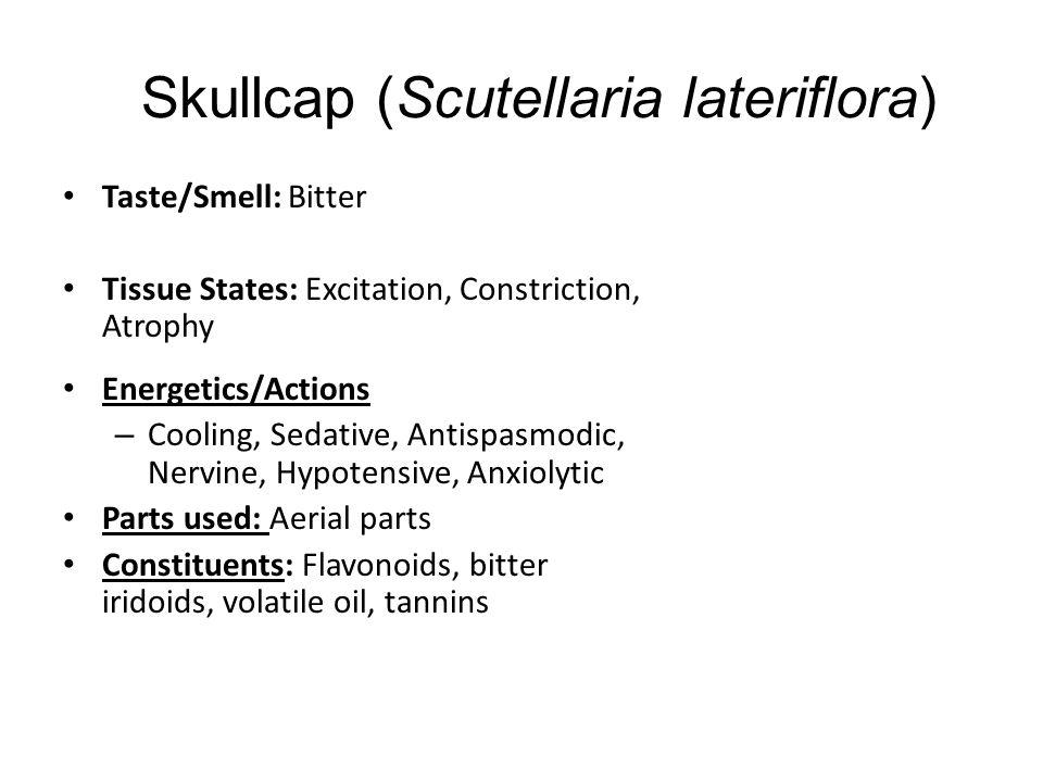 Skullcap (Scutellaria lateriflora)