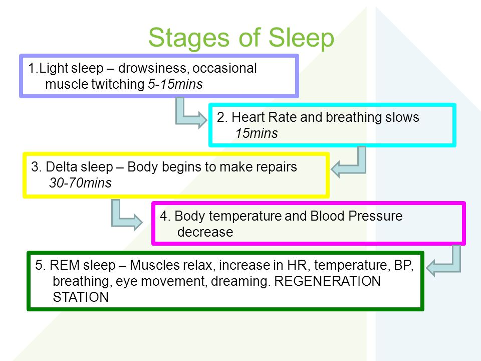 Stages of Sleep 1.Light sleep – drowsiness, occasional muscle twitching 5-15mins. 2. Heart Rate and breathing slows 15mins.