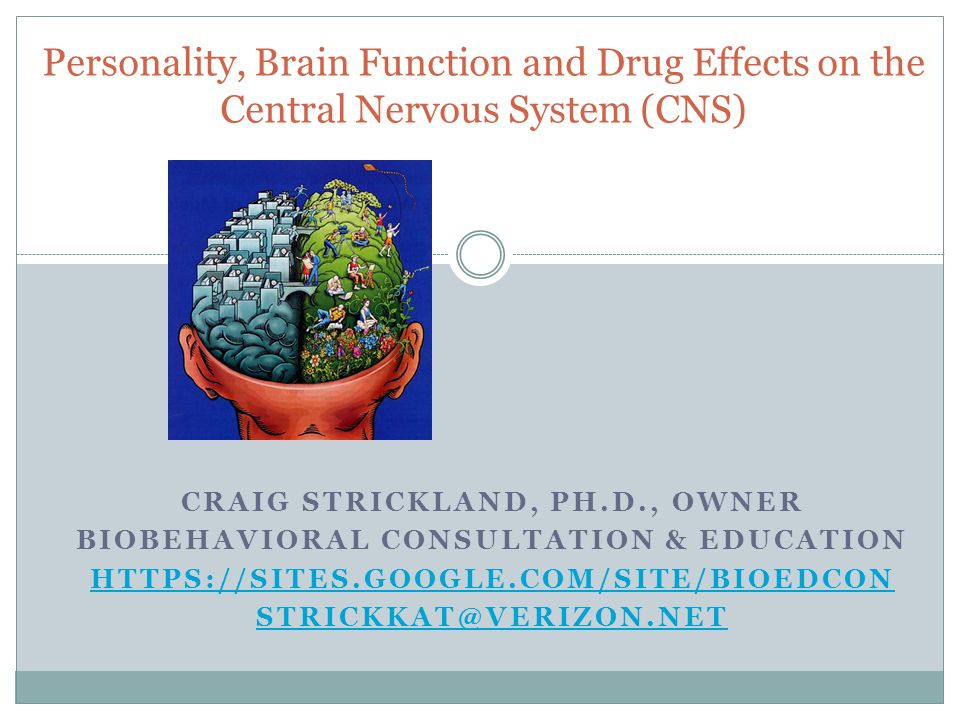Personality, Brain Function and Drug Effects on the Central Nervous System (CNS)