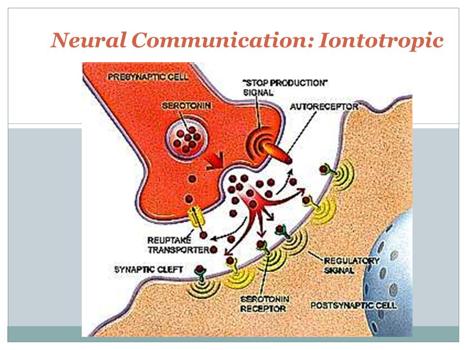 Neural Communication: Iontotropic
