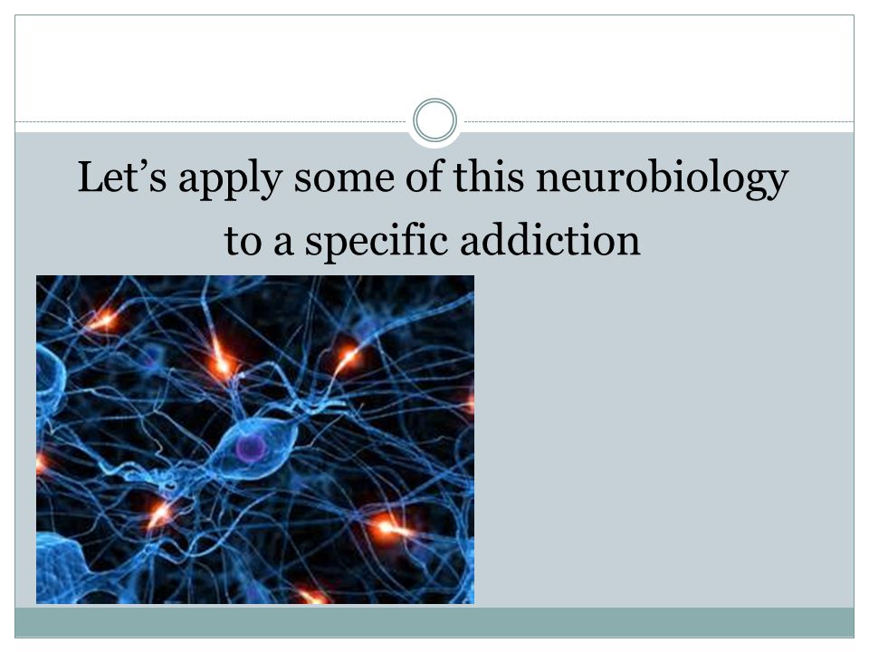 Let's apply some of this neurobiology to a specific addiction
