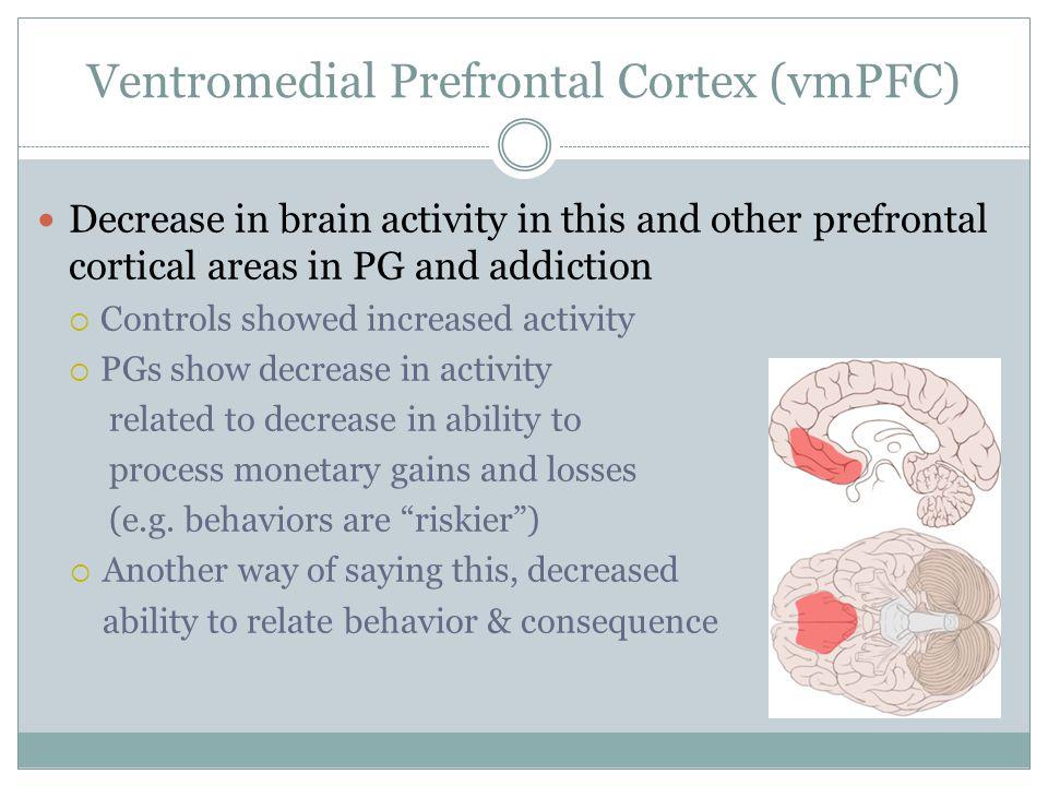 Ventromedial Prefrontal Cortex (vmPFC)