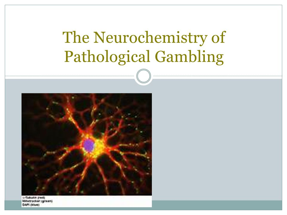 The Neurochemistry of Pathological Gambling