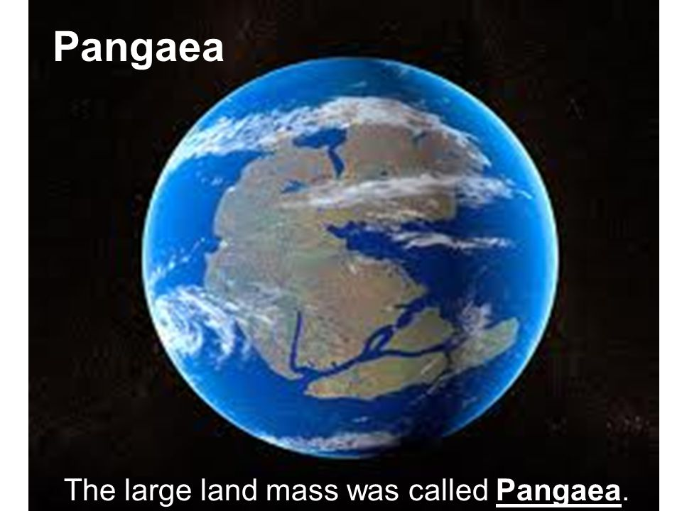 Pangaea The large land mass was called Pangaea.