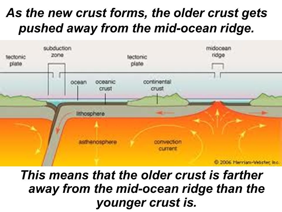As the new crust forms, the older crust gets pushed away from the mid-ocean ridge.