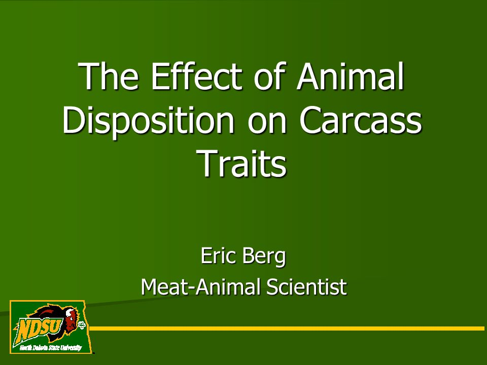 The Effect of Animal Disposition on Carcass Traits