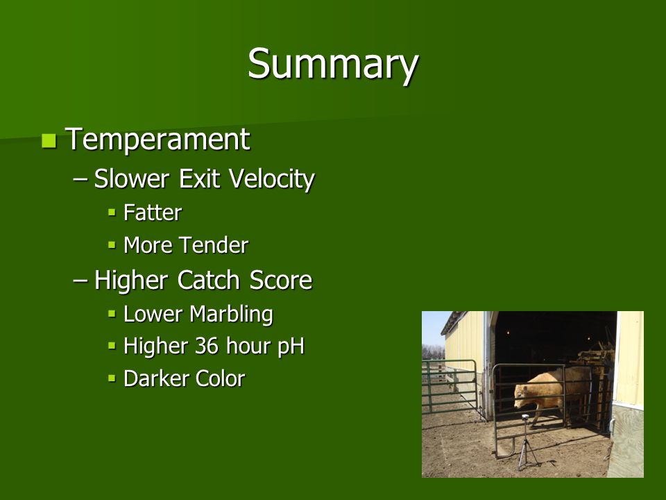 Summary Temperament Slower Exit Velocity Higher Catch Score Fatter