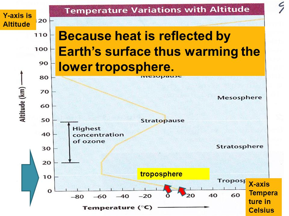 Y-axis is Altitude Because heat is reflected by Earth's surface thus warming the lower troposphere.
