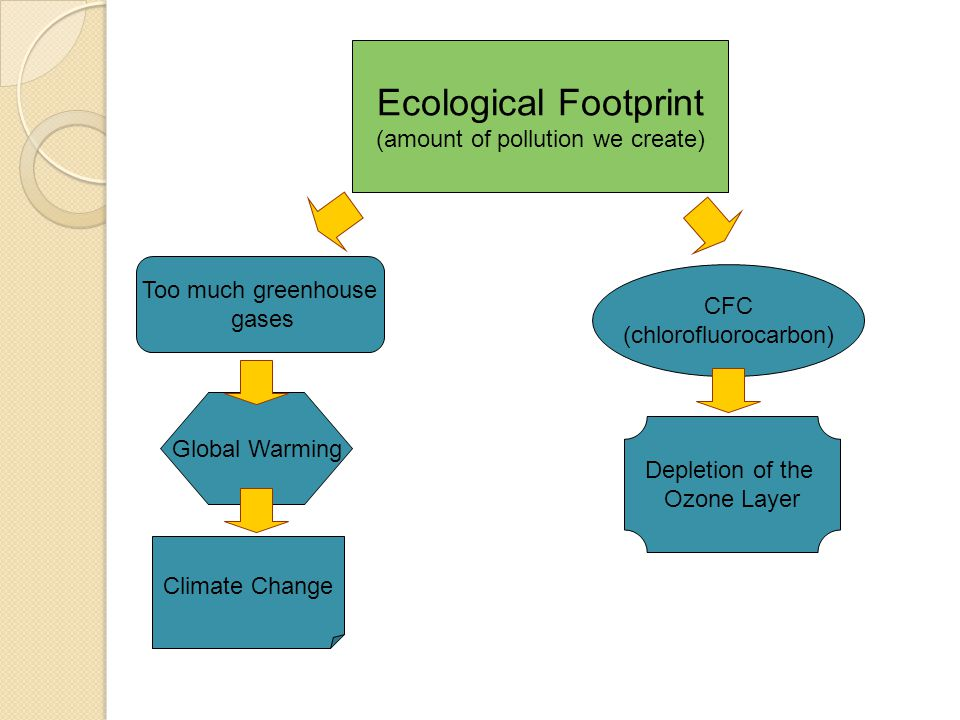 Ecological Footprint (amount of pollution we create)