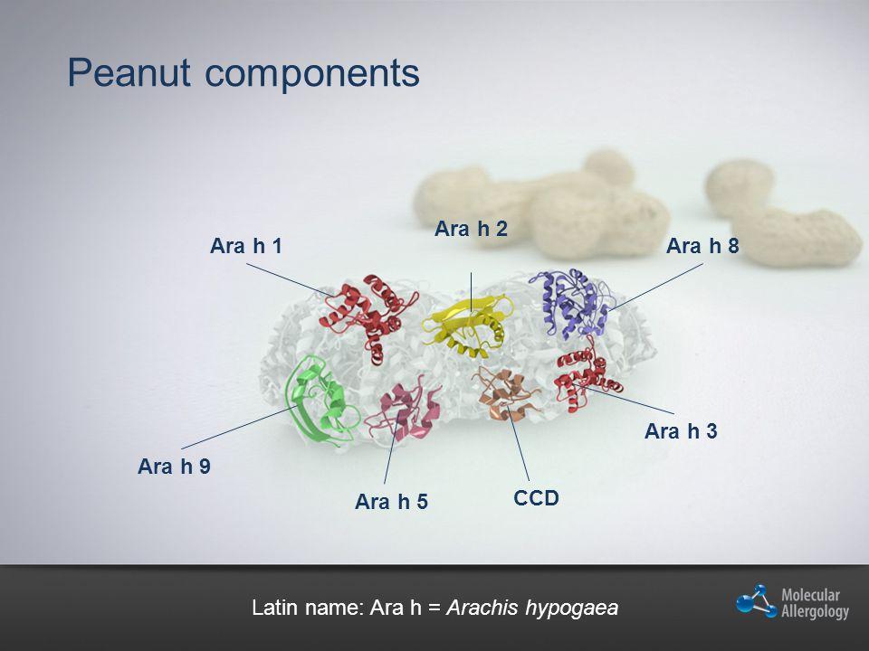 Latin name: Ara h = Arachis hypogaea