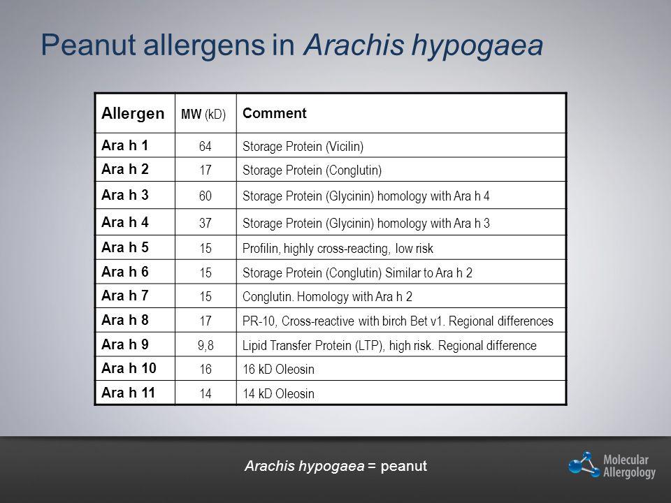 Peanut allergens in Arachis hypogaea