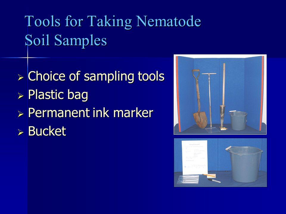 Tools for Taking Nematode Soil Samples
