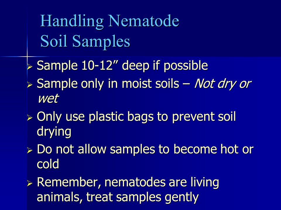 Handling Nematode Soil Samples