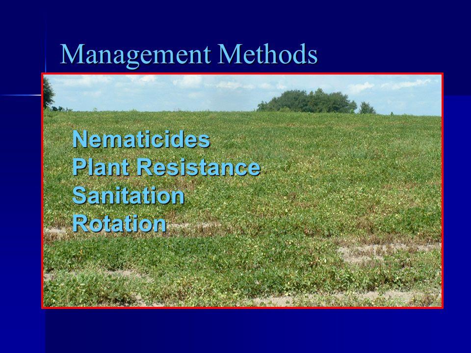 Management Methods Nematicides Plant Resistance Sanitation Rotation