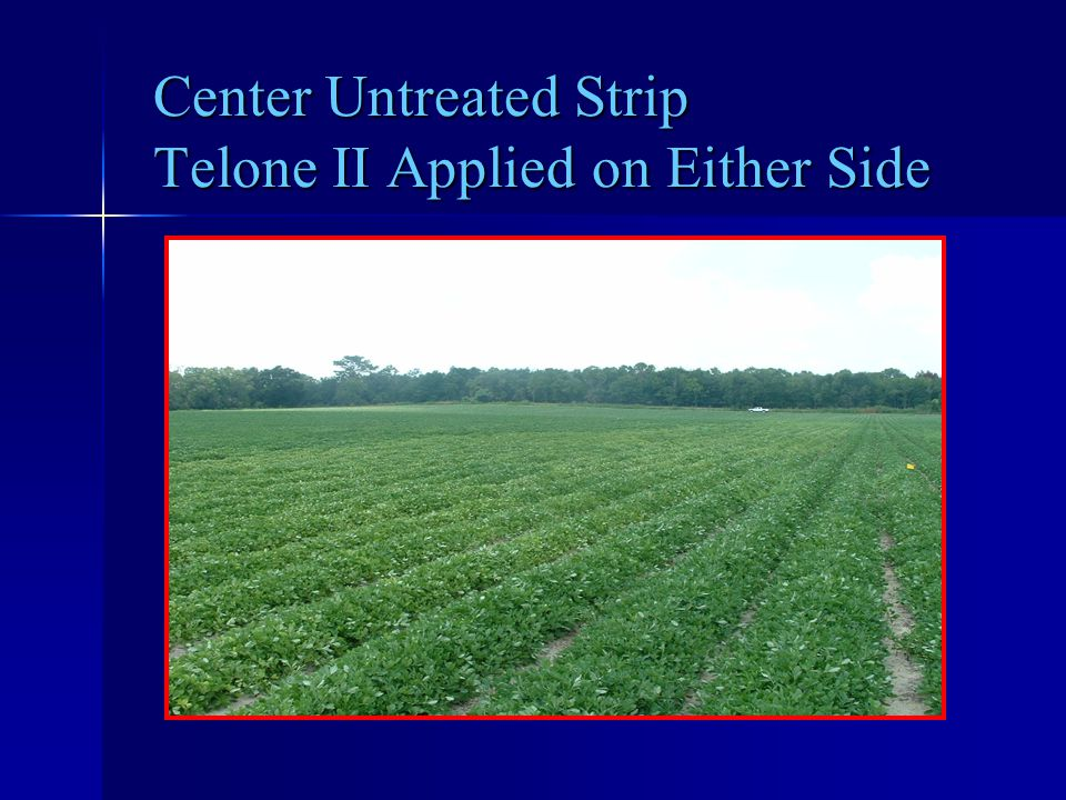 Center Untreated Strip Telone II Applied on Either Side