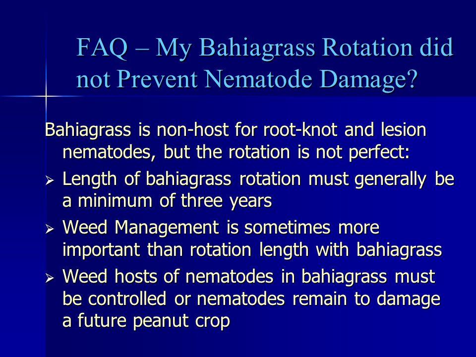 FAQ – My Bahiagrass Rotation did not Prevent Nematode Damage