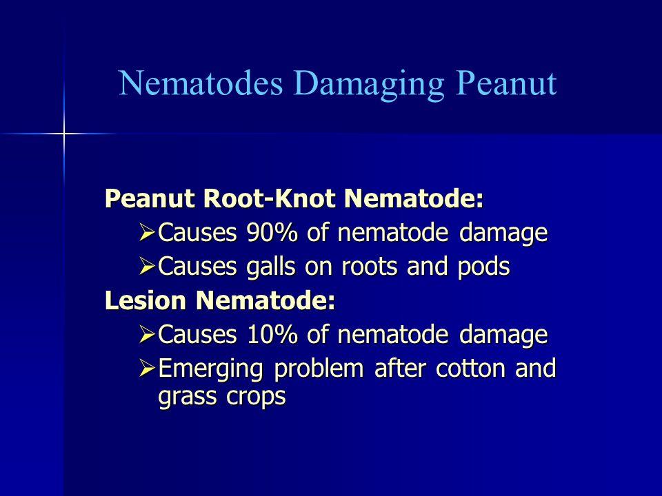 Nematodes Damaging Peanut