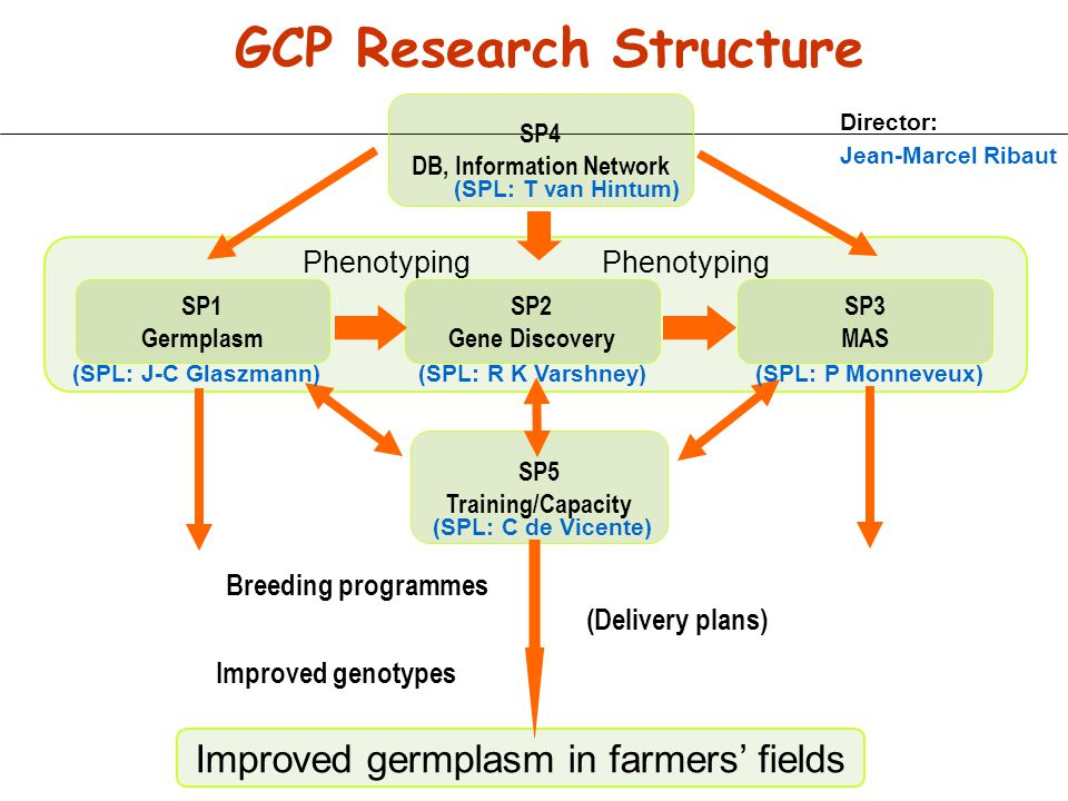 GCP Research Structure DB, Information Network