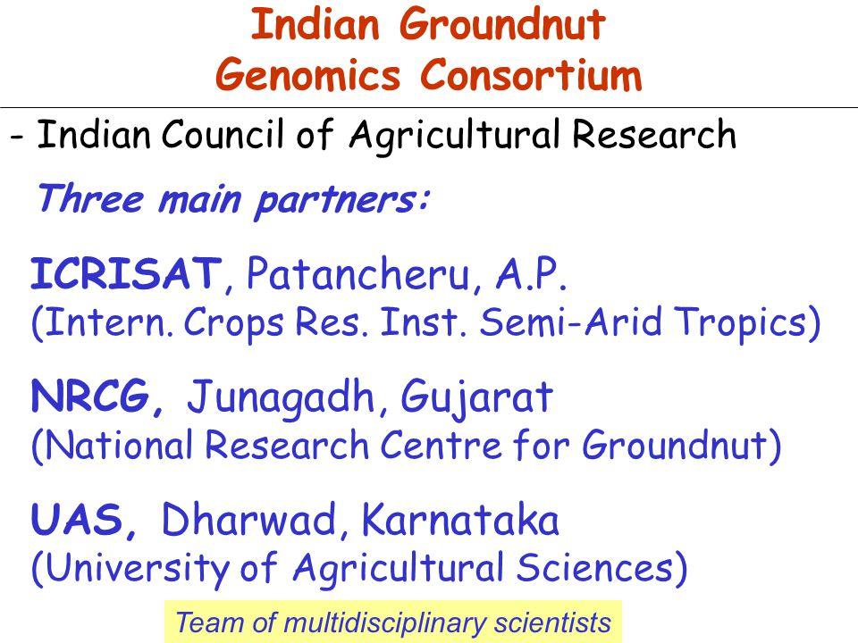 Indian Groundnut Genomics Consortium