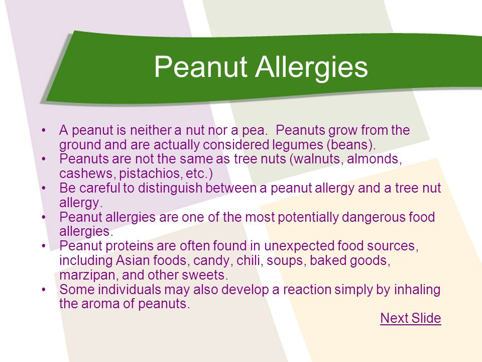 Peanut Allergies A peanut is neither a nut nor a pea. Peanuts grow from the ground and are actually considered legumes (beans).