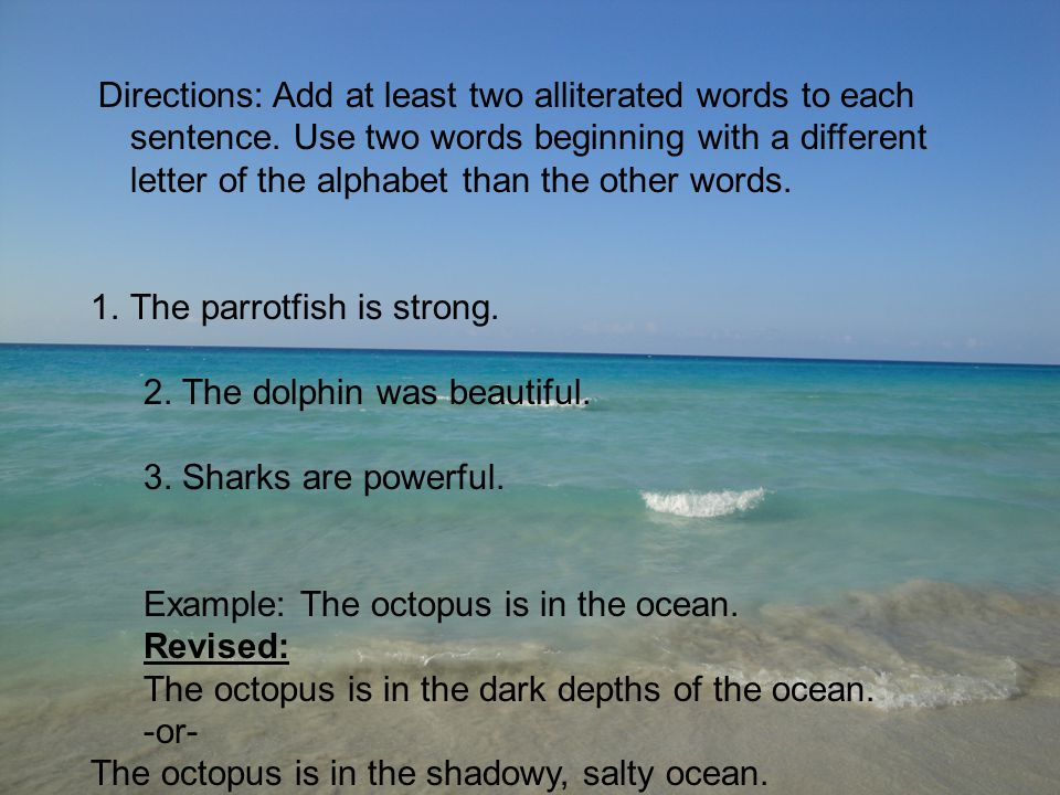 The parrotfish is strong. 2. The dolphin was beautiful.
