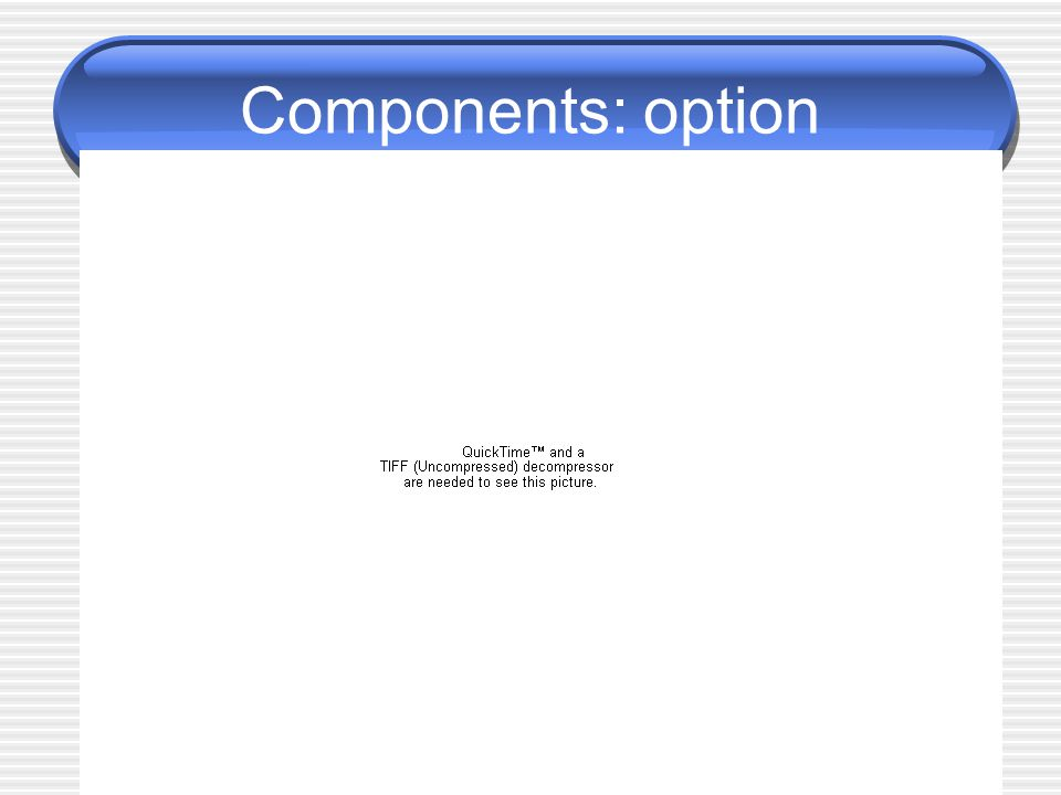 Components: option
