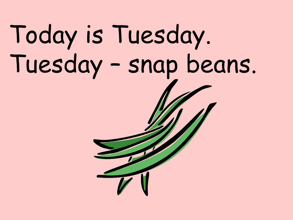 Today is Tuesday. Tuesday – snap beans.