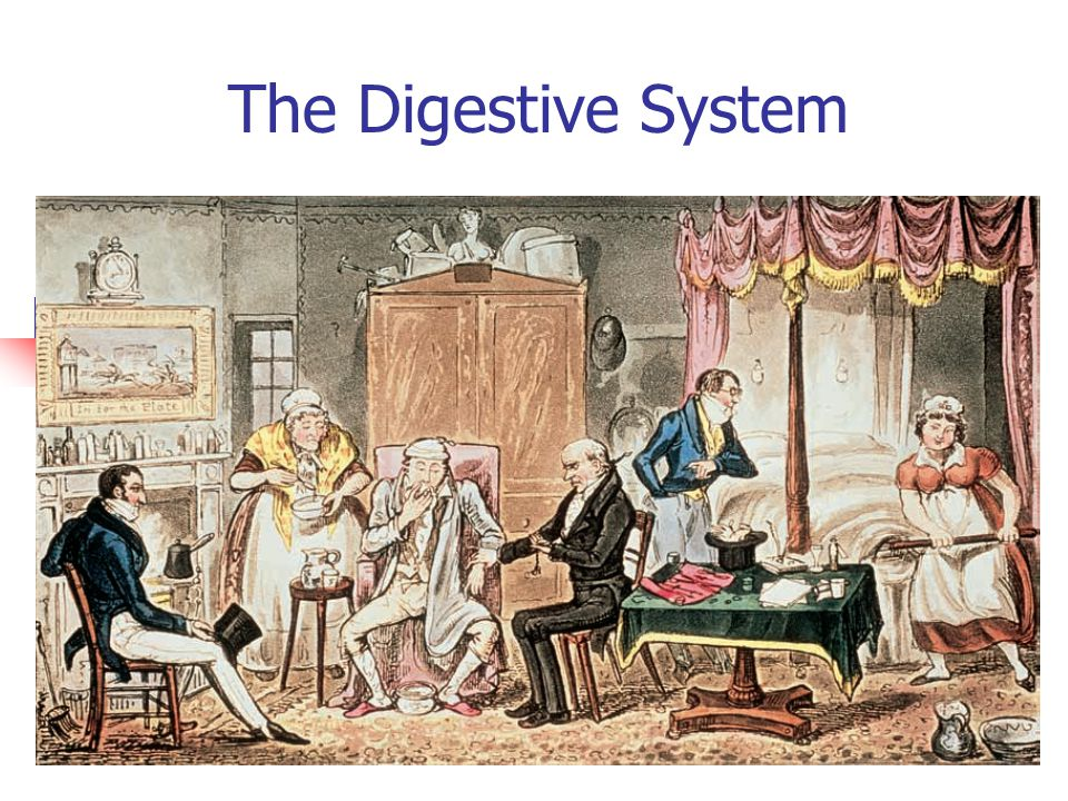 The Digestive System This Really Happened!