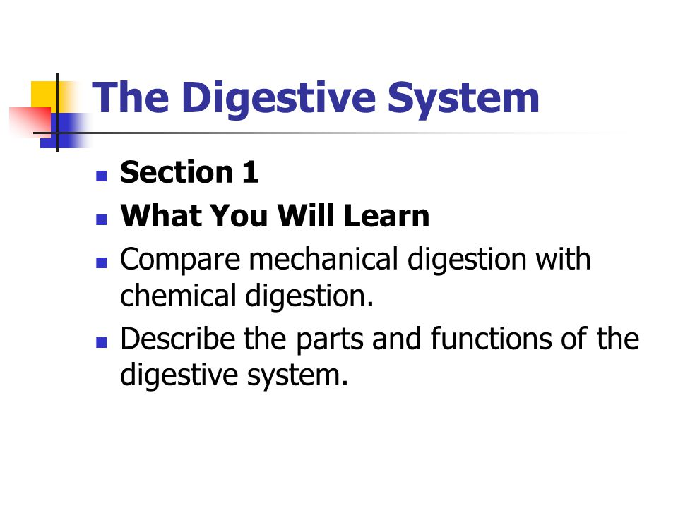 The Digestive System Section 1 What You Will Learn